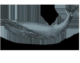 Logo-Alaska1